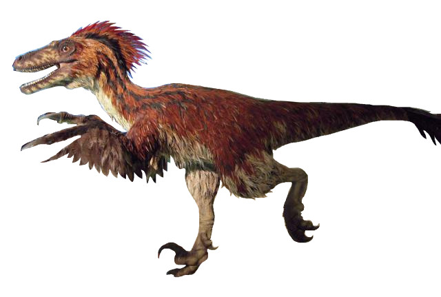 Image result for deinonychus old and new reconstruction
